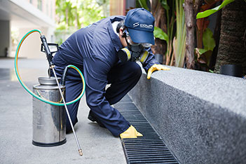 DISINFECTION | PEST CONTROL SERVICES